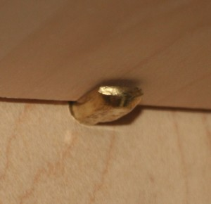 shelf pin
